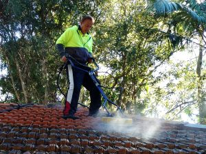 Roof Cleaning, Mega Services, Cleaning, Cleaning in Brisbane, Cleaning in Caboolture